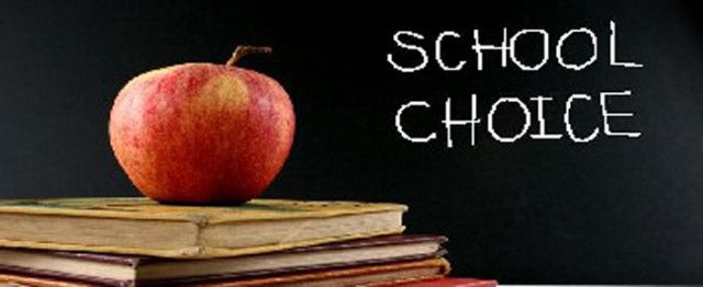 School Choice and Vouchers